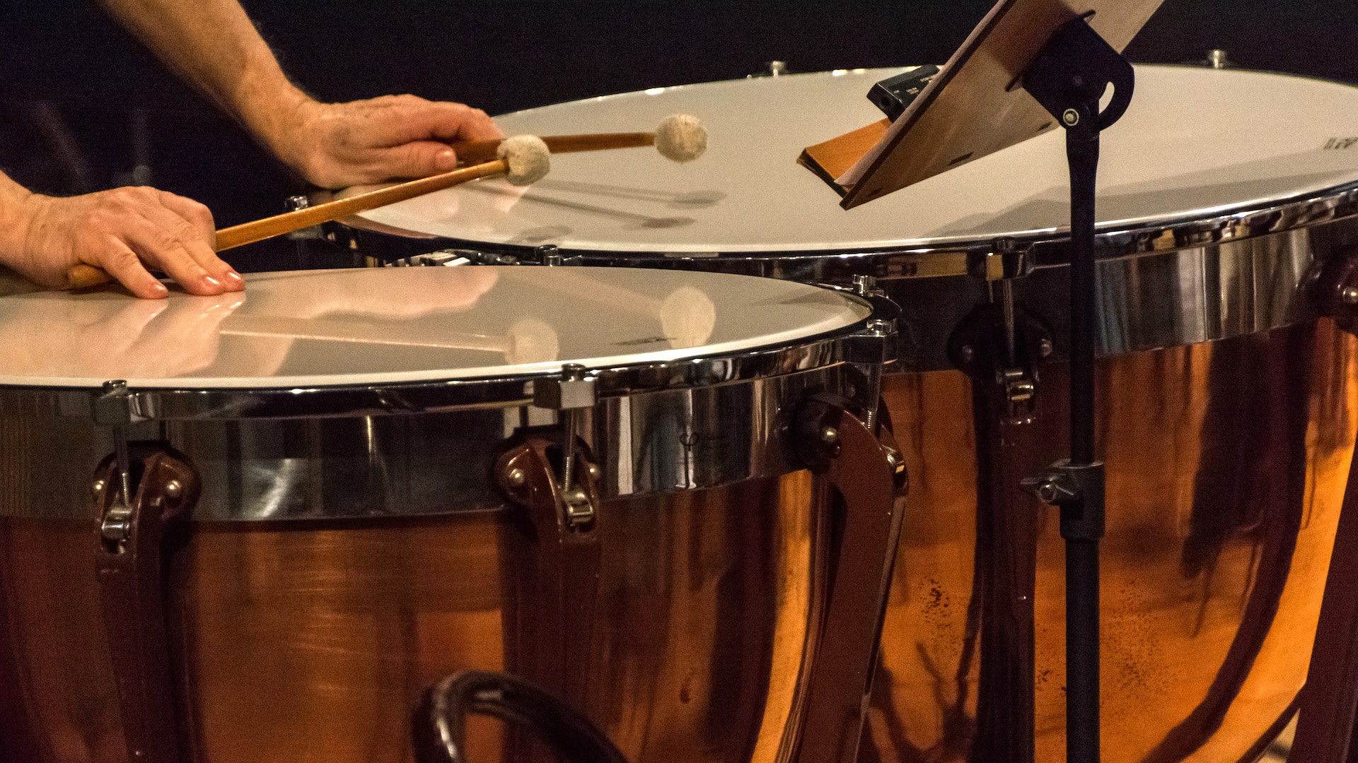 Studies Tuned Percussion Snare Drum And Timpani